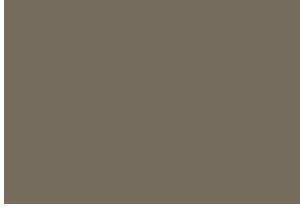 Purposeful CO Logo